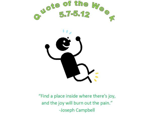 chippewa falls, wi chiropractor healthy quote of the week 5.7 - 5.12